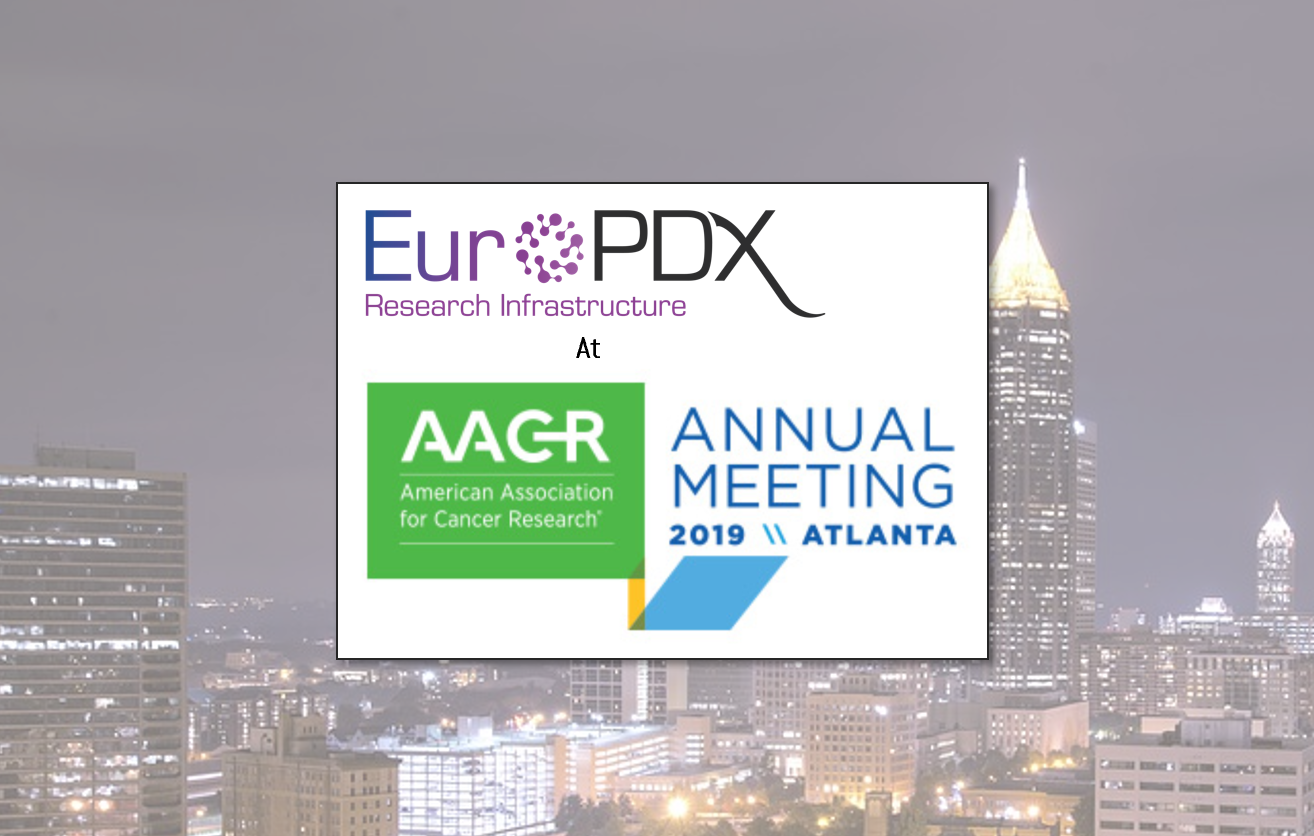 EurOPDX at AACR Annual Meeting 2019 — Thumbnail image