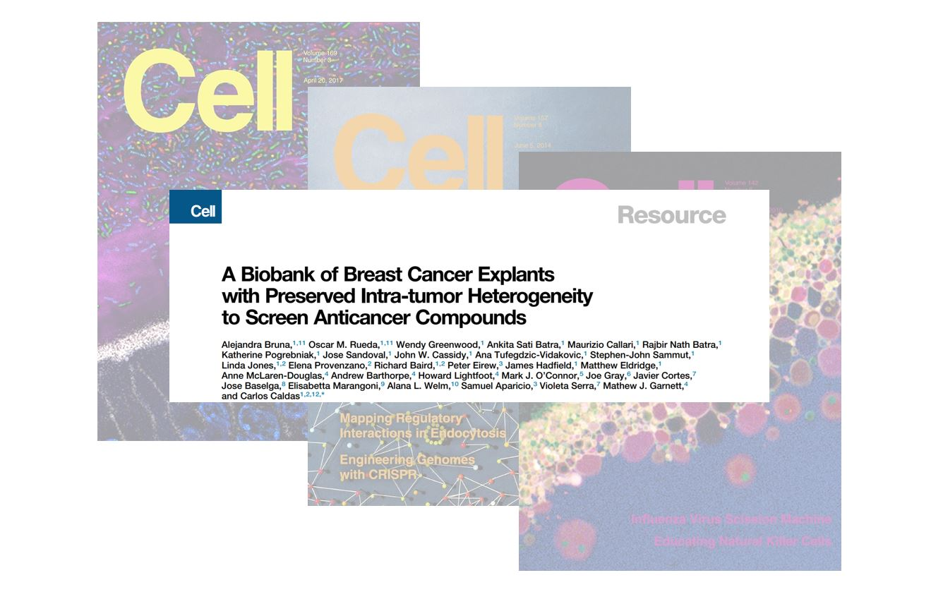 Featured Cell article - Breast cancer PDX-derived cells as drug-screening platform — Thumbnail image