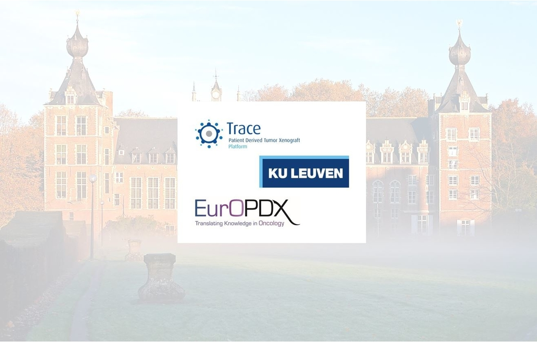 New vacancy for an animal technician at KU Leuven with the TRACE platform — Thumbnail image